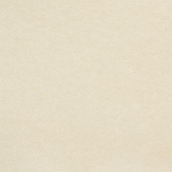 Moquette aiguilletée beige