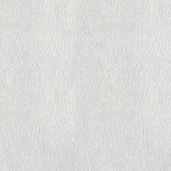 Papier peint uni gris clair
