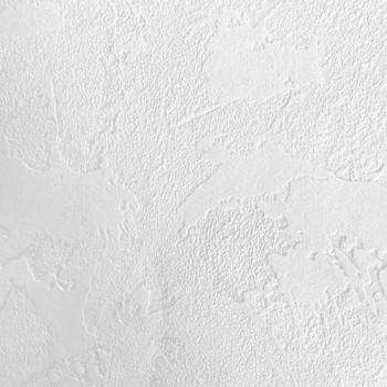 Papier peint taloche blanc à peindre