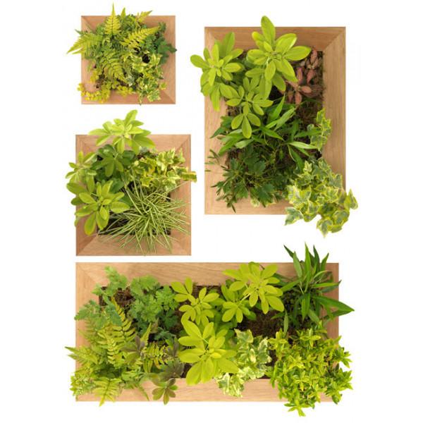 Stickers jardin vertical