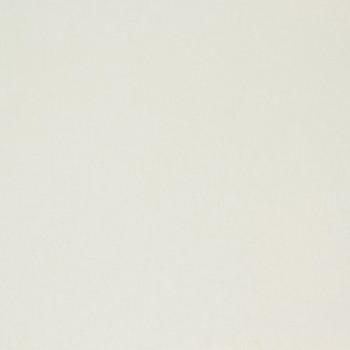 Tissu coton uni blanc 280 cm