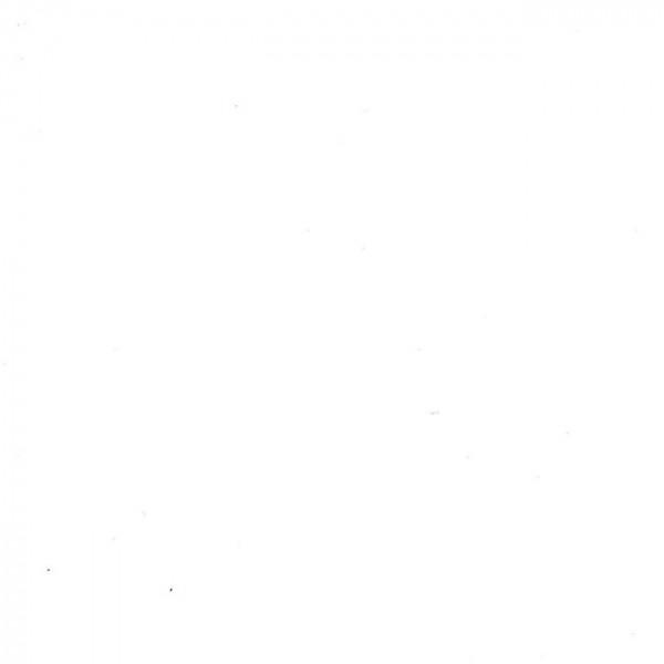 Rouleau adhésif uni blanc