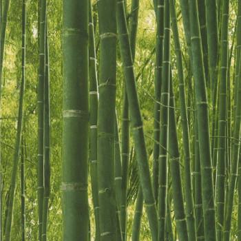 Papier peint LES NATURELS imitation bambou